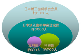 日本矯正歯科学会会員図